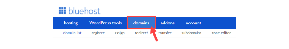 Click the Domains Tab from the Navigation Menu