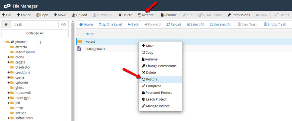 Restore Files in File Manager Trash