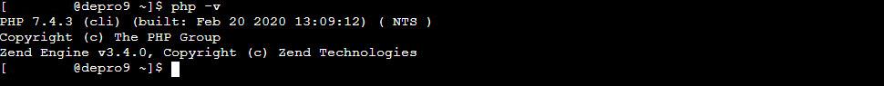 Terminal PHP Version Check Output