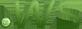 Register .ws domain name
