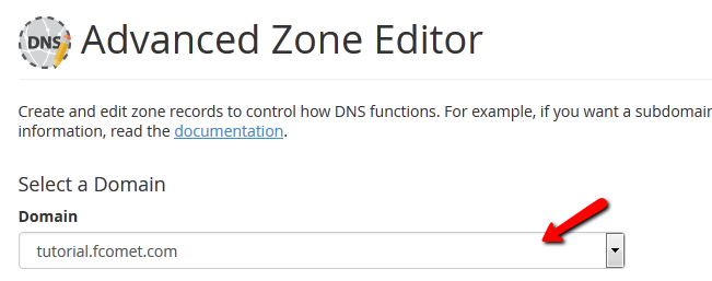 select domain dns zone