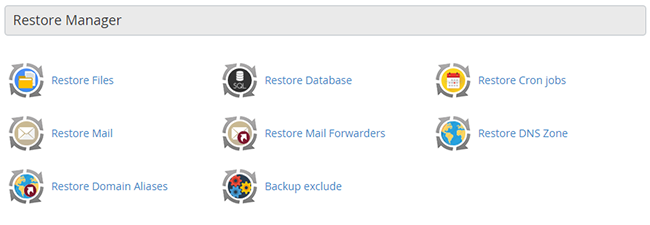 The restore manager group