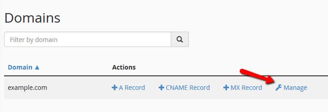 Manage a Domain DNS Zone via cPanel
