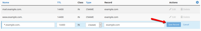 Save Changes to a DNS Record after editing it in cPanel