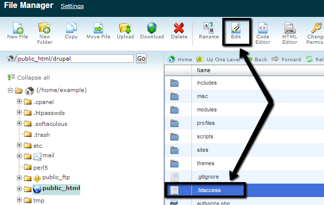 Edit a file via File Manager in cPanel