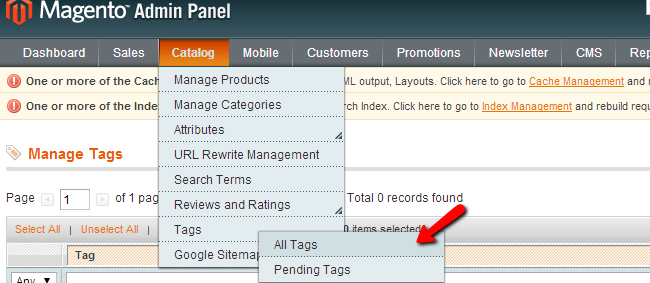 Magento Product Tags
