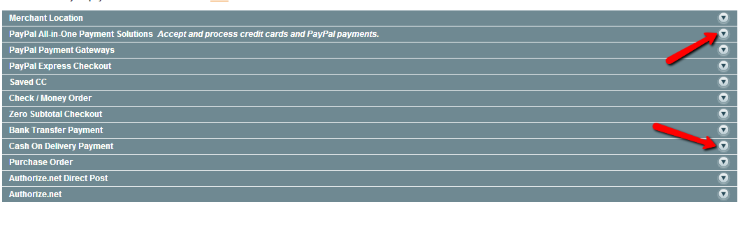 Magento Payment Options