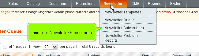 Magento newsletter subscribers