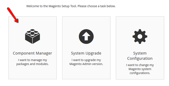 Accessing the Component Manager in Magento 2
