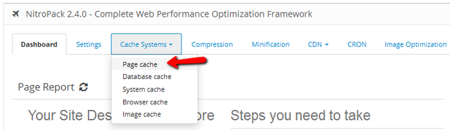 Accessing the Page Cache menu from the Cache Systems tab in NitroPack
