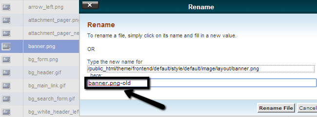 Rename a file using File Manager in cPanel