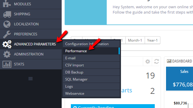 accessing the performance page