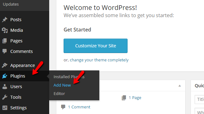 Accessing the Wordpress plugin page