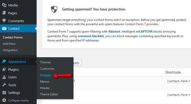 Access the Widgets Interface in WordPress