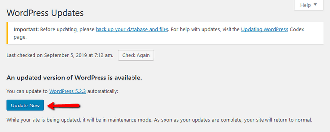 Confirm Automatic Update Procedure in WordPress