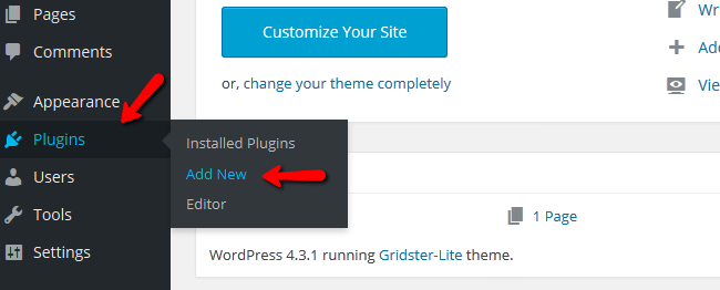 Accessing the WordPress Plugin Installer