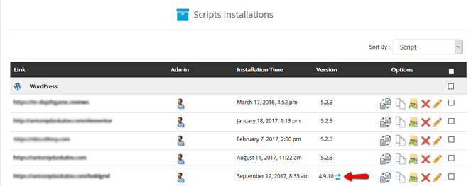 Initiate a WordPress Update via Softaculous