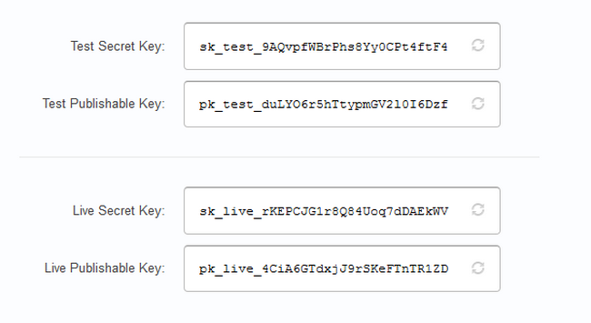 Copying the API Keys from your Stripe account