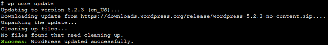 Update WordPress using WP-CLI