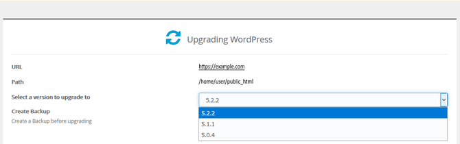 WordPress Version Update Choices in Softaculous