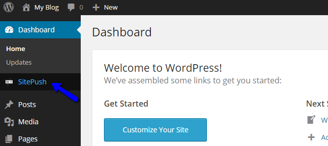 Access SitePush Staging in WordPress