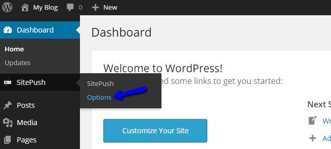 Configure WordPress Staging